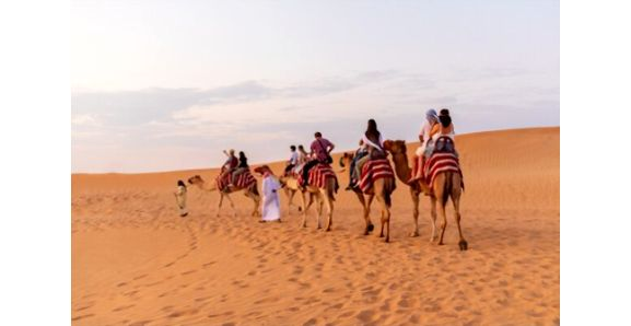 Evening Desert Safari Premium Camel Ride